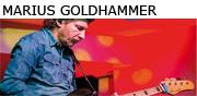 Marius Goldhammer